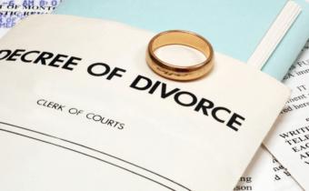 divorce.law